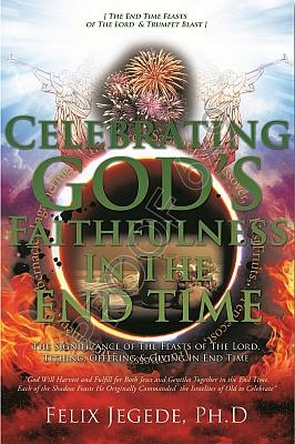 Celebrating book cover